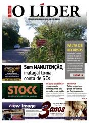 Jornal O Líder Edição 305