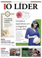 Jornal O Líder Edição 308